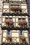 Windows with flowers in Alsace, France Royalty Free Stock Images
