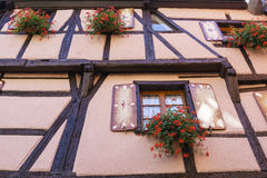 Windows with flowers in Alsace, France Stock Image