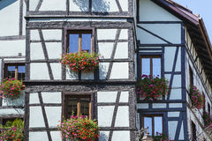 Windows with flowers in Alsace, France Royalty Free Stock Photography