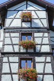 Windows with flowers in Alsace, France Royalty Free Stock Photos