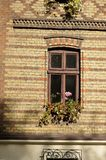 Windows with flowers Royalty Free Stock Images