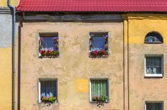 Windows with flowers on the facade of the old house. Kaliningrad, Russia. Stock Photography