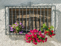 Windows with flowers Royalty Free Stock Photography