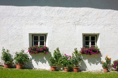 Windows and flowers Stock Photography
