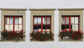 Windows with flowers. Stein-am-rhein, Switzerland. Royalty Free Stock Image