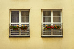 Windows with flowers Royalty Free Stock Photos