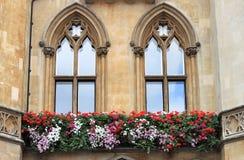 Windows gótico Foto de archivo libre de regalías
