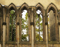 Windows of gothic cathedral. High windows of the ruin of an old gothic cathedral. This is a view from inside the ruin royalty free stock photos