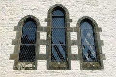 Windows gotico Fotografie Stock Libere da Diritti
