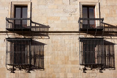Windows of the Guzmanes palace Stock Images