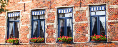 Windows in the house Royalty Free Stock Photo