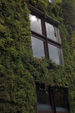 The windows of the house are covered with green vegetation. Quay Branly in Paris, France. August 31, 2017 Stock Images