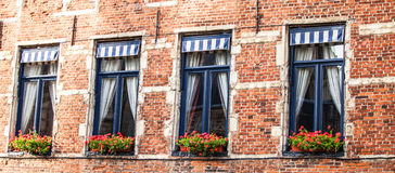 Windows in the house with flowers Royalty Free Stock Photo