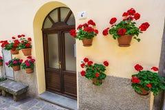 Windows i drzwi w starym domu dekorowaliśmy z kwiatem Obraz Stock