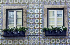 Windows i Lissabon Royaltyfri Fotografi