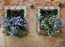 Windows i Venedig, Italien Arkivfoton