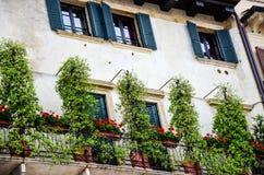 Windows i Verona Arkivbild