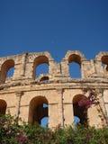 Windows-Kolosseum Stockfotografie