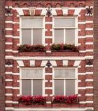 Windows med blommor Royaltyfria Foton