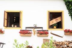 Windows med röda blommor Fotografering för Bildbyråer