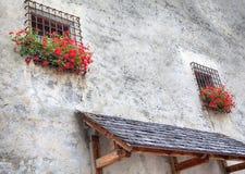 Windows med röda pelargon Royaltyfria Bilder