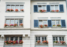 Windows mit Blumen Stockfotografie