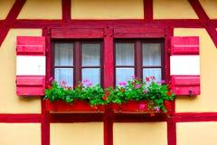 Windows mit Blumen stockbilder