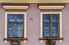 Windows mit Blumen Stockbild