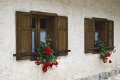 Windows mit Blumen Stockbild