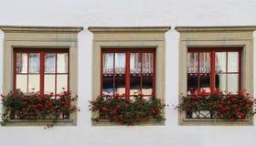 Windows mit Blumen Stein-sein-Rhein, die Schweiz Lizenzfreies Stockbild