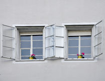 Windows mit Blumenpotentiometern Lizenzfreie Stockbilder