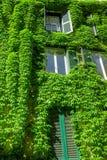 Windows na construção velha em Roma Imagem de Stock Royalty Free