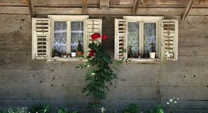 Windows na typowym drewnianym domu w wiosce Krapje, Chorwacja zdjęcie royalty free