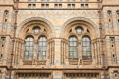 Windows of Natural History Museum Stock Photography