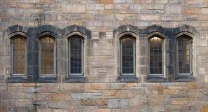 Windows in  Neo-Gothic style Stock Photos