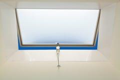 Windows no telhado Fotografia de Stock