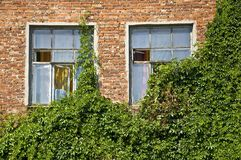 Windows in old brick wall Royalty Free Stock Photos