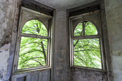 Windows in old house. With tree behind royalty free stock photos