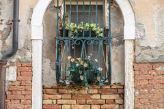 Windows of old house in Venice. Italy Royalty Free Stock Images