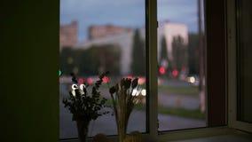 Windows pasa por alto la calle de la ciudad almacen de video
