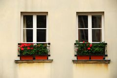 Windows with planters Stock Photos