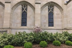Windows and plants next to church. Royalty Free Stock Photography