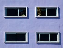 Windows on the purple wall. Stock Image