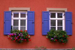 Windows on a red wall Stock Images