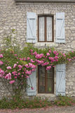 Windows and roses Stock Photos