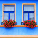 Windows and shutters Stock Image