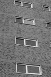 Windows su un grande edificio per uffici Immagine Stock