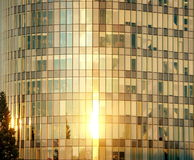Windows in the sun. Modern building reflecting the light of the setting sun Royalty Free Stock Photos