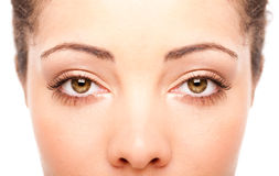 Windows to the soul. Beautiful female eyes as windows to the soul on face with fair skin, health concept, isolated Stock Photography
