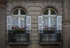 Windows a Tolosa Fotografia Stock